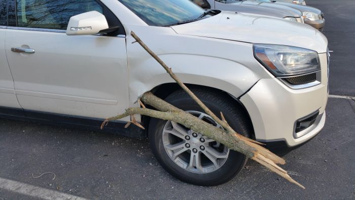 Large SUV Gets Penetrated By A Big Wooden Stick