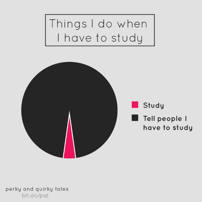 Helpful Pie Charts That Are Both Hilarious And True