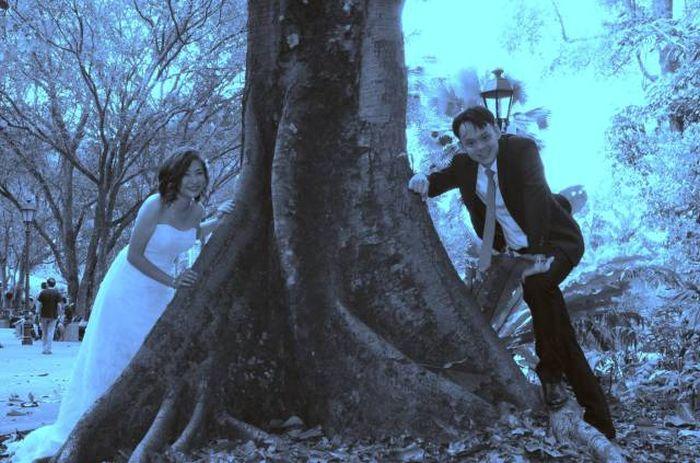 Amateur Photographer Spoils Happy Couple's Wedding Photos