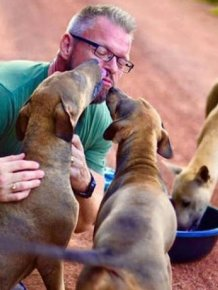 Every Single Day This Man Feeds 80 Stray Dogs In Thailand