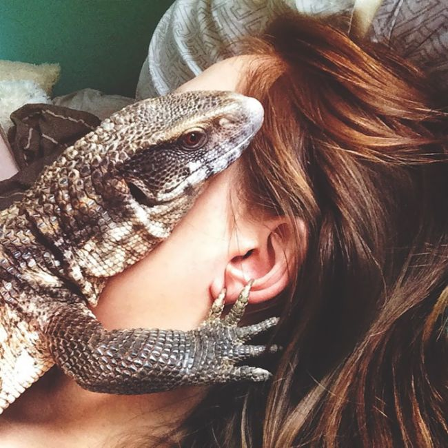 This Lizard Is Showing The World That Reptiles Can Be Cute Too