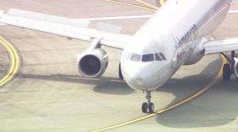 American Airlines Flight Makes Emergency Landing After Hitting A Flock Of Birds