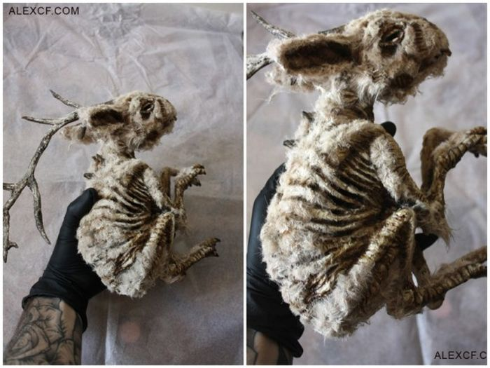 Old Bodies From Strange Creatures Were Discovered In A London Basement