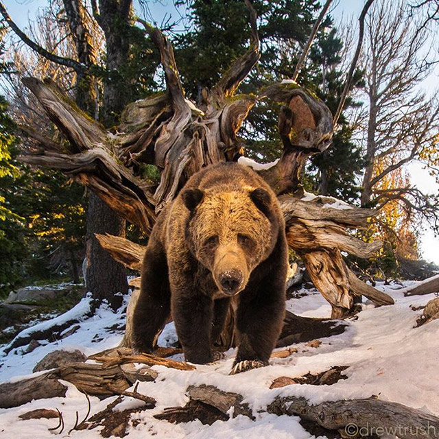 This Is Why You Need To Start Following National Geographic On Instagram Right Away