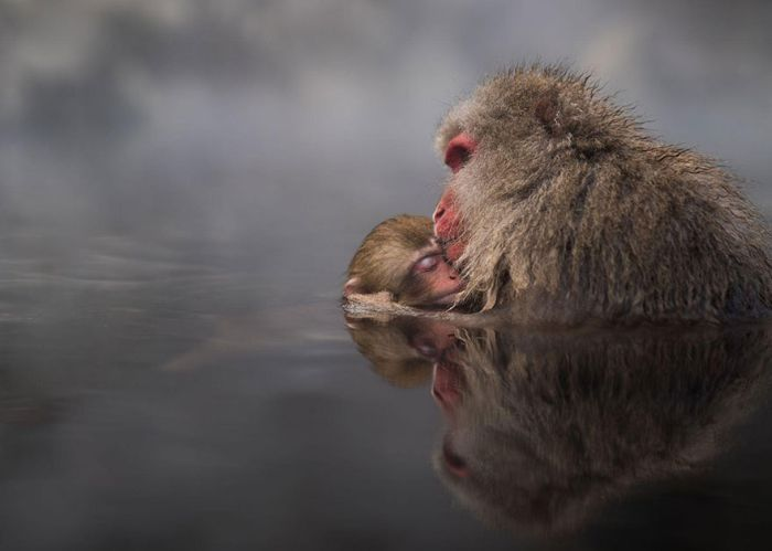 The Best Pics From The 2016 National Geographic Travel Photographer Contest