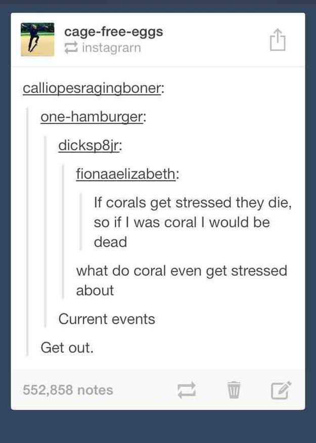 Tumblr Jokes That Will Make You Laugh Harder Than You Ever Thought You Could