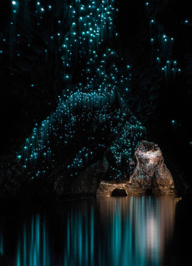Glow Worms Make The Waitomo Caves A Magical Place To Visit
