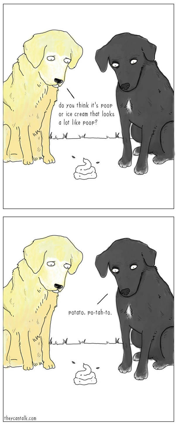 What Animals Would Probably Say If They Could Talk