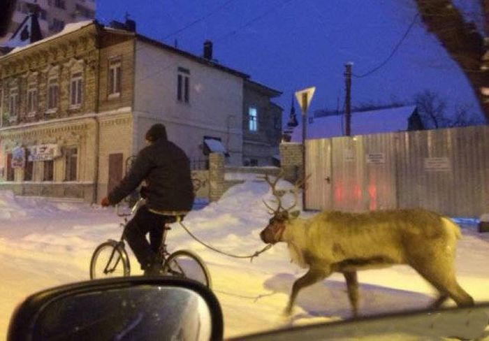 Pictures That Only Make Sense Because They Were Taken In Russia