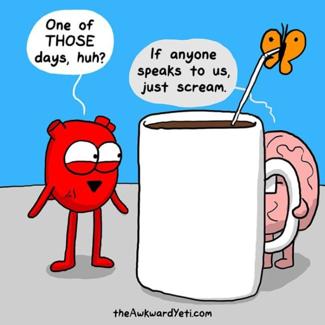 funny comics that show the biggest differences between the heart and