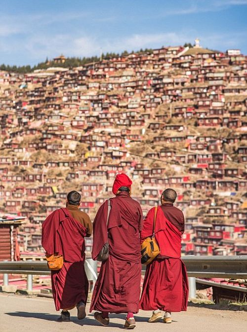 A Look At The World's Busiest Buddhism Campus