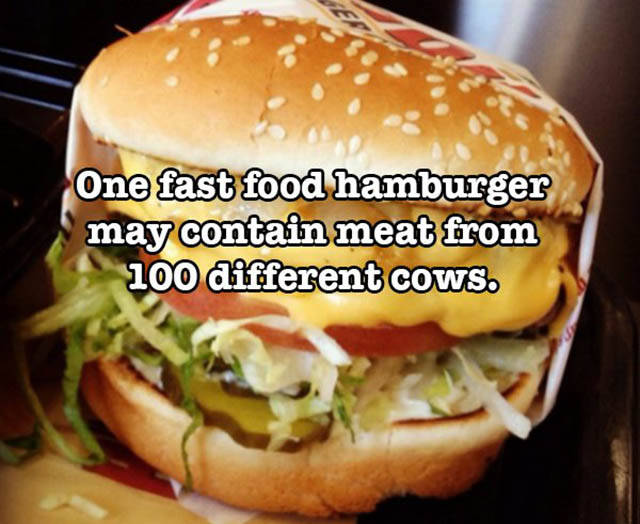 Crazy Food Facts That Might Blow Your Mind