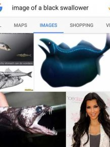When Google Search Gives You The Results You Need Instead Of The Ones You Want