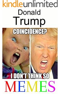 Donald Trump Memes That Sum Up His Presidential Campaign So Far ...