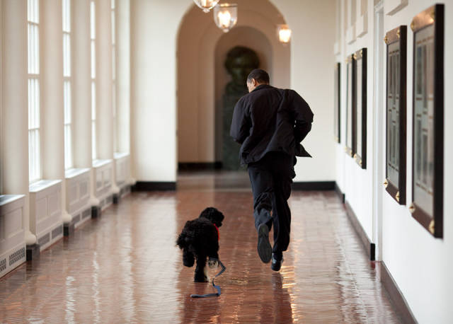 Barack Obama's Photographer Has Taken 2 Million Pictures Of The President