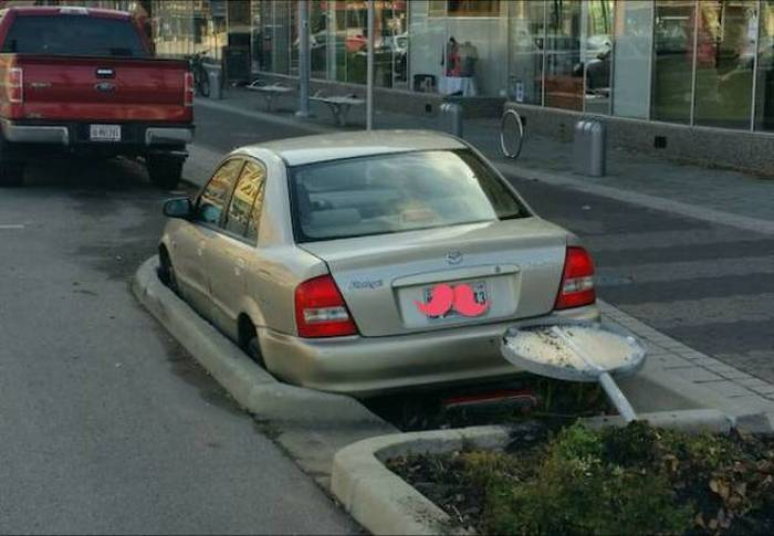People Who Stepped Up To Do One Job And Failed Miserably