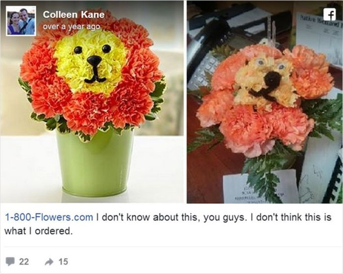 Online Purchases That Turned Out To Be Disappointing But Funny