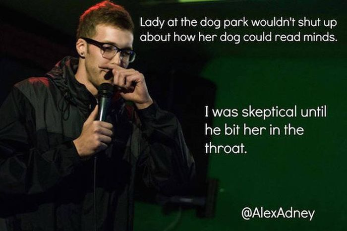 A Hilarious Dose Of Humor To Keep You Laughing Through The Week
