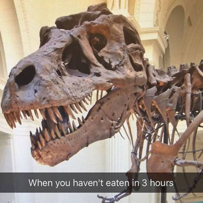 Snapchat And Museums Just Go So Well Together