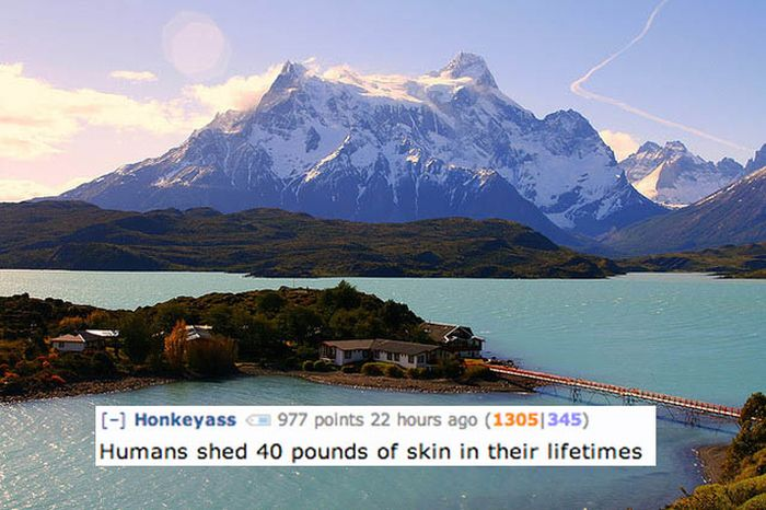 Disgusting Reddit Comments That Will Teach You A Lot About Your Body