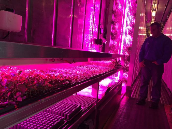 Google Employees Use Shipping Containers To Grow Organic Herbs