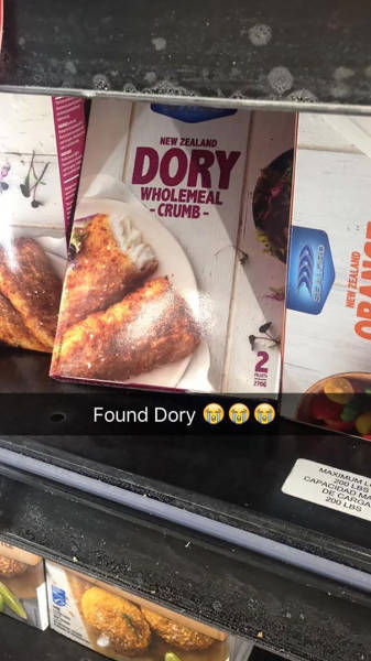 A Hilarious Collection Of Some Of The Best Snapchats To Ever Hit The Web