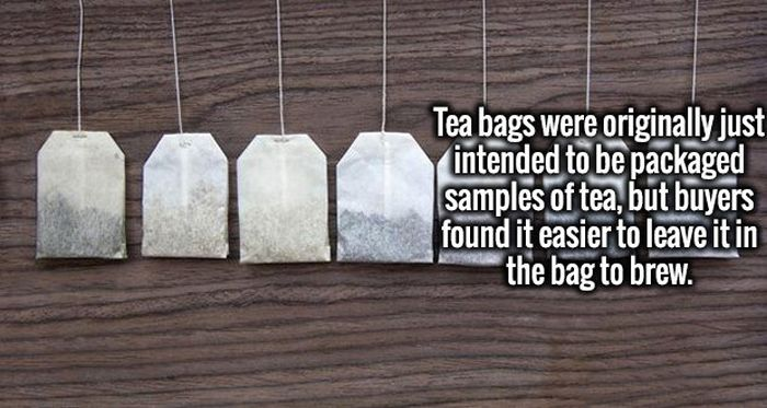Intriguing Facts To Quench Your Insatiable Thirst For Knowledge