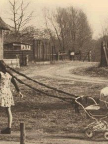 Vintage Photos That Will Leave You Baffled