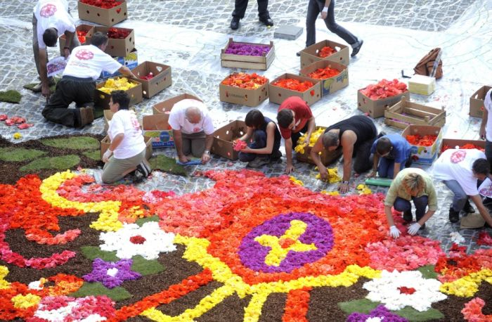 Brussels Is Now Covered By A Beautiful Flower Carpet