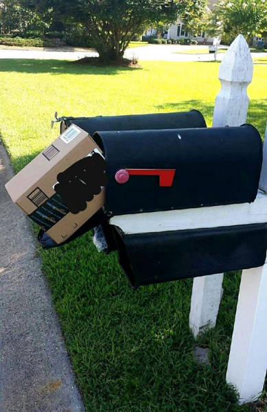 Crazy Delivery Fails That Make You Want To Scream At The Delivery Guy