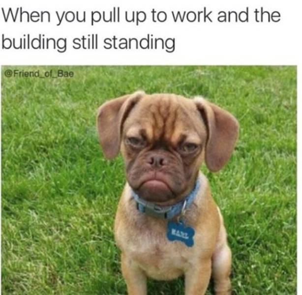 Work Fails & Job LOLs, part 68