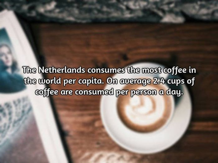 Most Interesting Facts >> Interesting Facts About Coffee The World S Most Important Drink