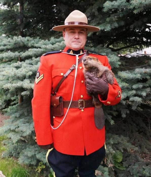 Canadians Are A Special Type Of Crazy And These Pictures Prove It