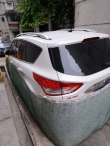 Drivers In This Chinese City Are Rat-Proofing Their Cars