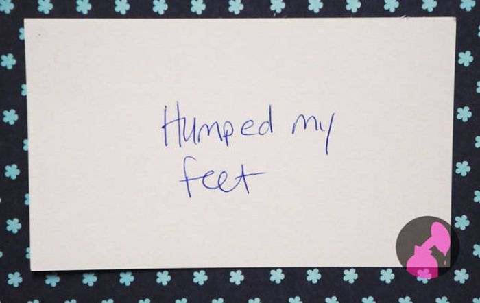 Some Of The Craziest Things Kids Have Ever Done Or Said