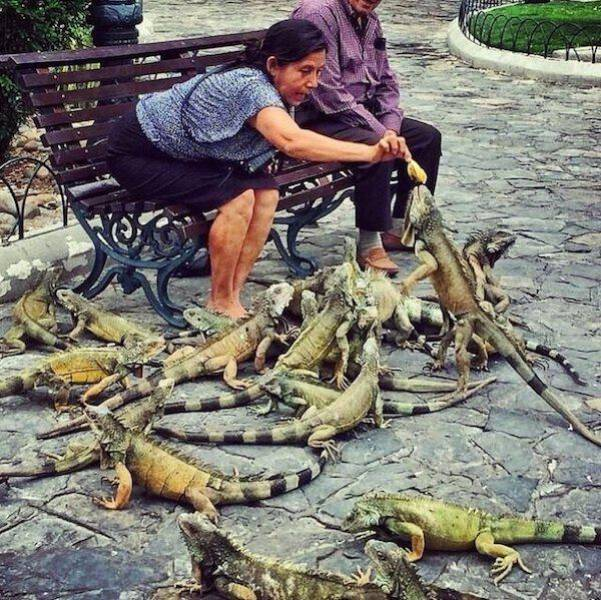 Weird And Wacky Sights That You Don't See Everyday