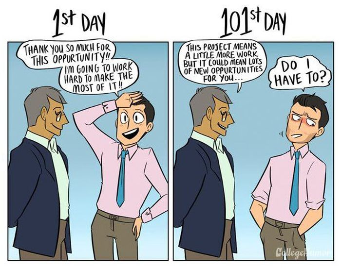 How Your Job Changes From The 1st Day To The 101st Day