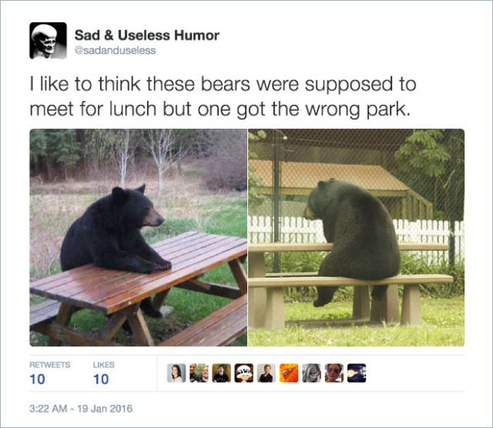 Hilarious Twitter Jokes That Will Make Keep You Laughing For A While