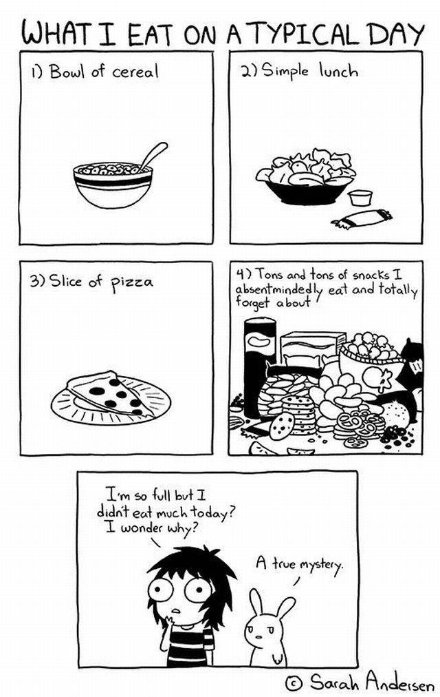 Humorous Comic Strips That Every Girl Can Relate To