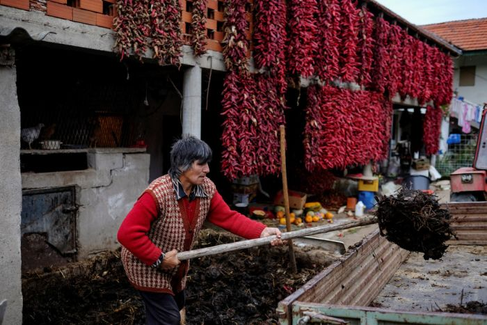 Interesting Pictures From The Serbian Paprika Capital Of The World
