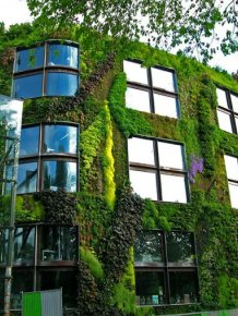 A New Law In Paris Allows Anyone To Plant Urban Gardens