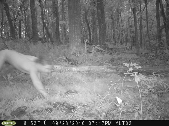 Animal Surveillance Camera Captures Something Very Bizarre