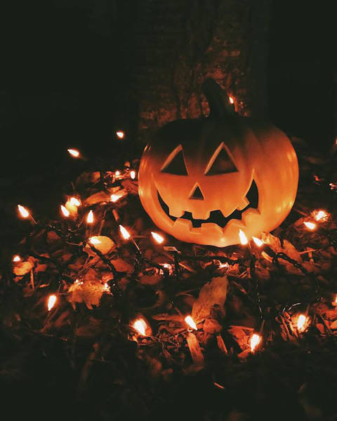 an awesome collection of halloween costumes and halloween themed pics - Halloween Themed Pictures