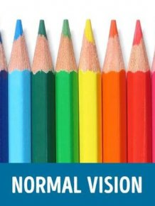 How People With Different Types Of Color Blindness See The World