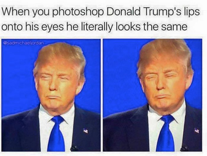 20 Of The Best Memes From The 2016 Presidential Election