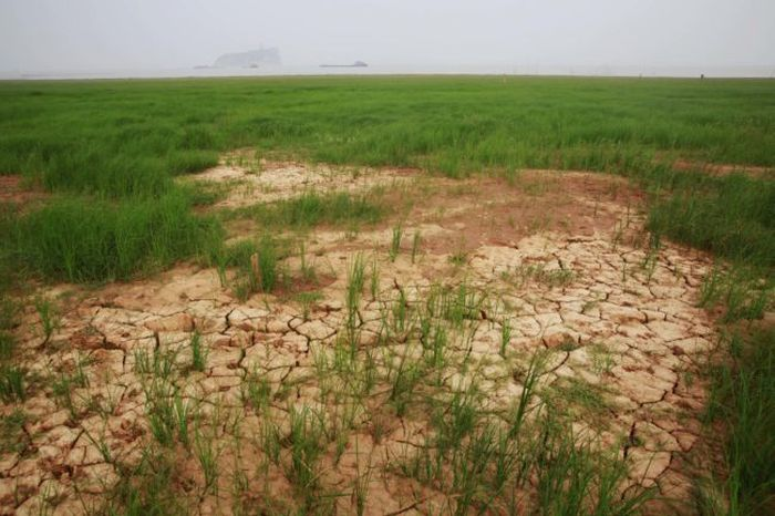 Massive Chinese Lake Dries Up In Just A Matter Of Weeks