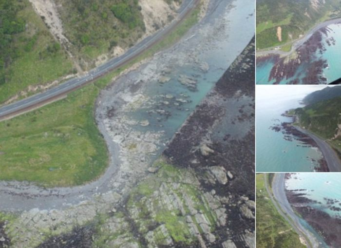 New Zealand's Earthquake Lifted The Sea Floor By Two Metres