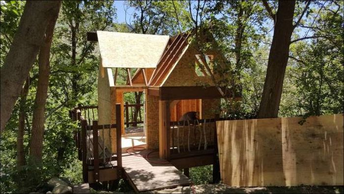 You're Going To Want To Live In This Epic Tree House