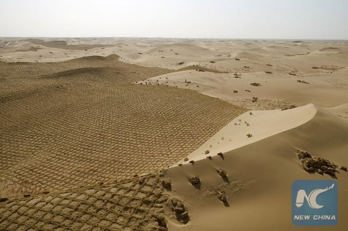 China Is Trying To Turn Parts Of The Desert Green
