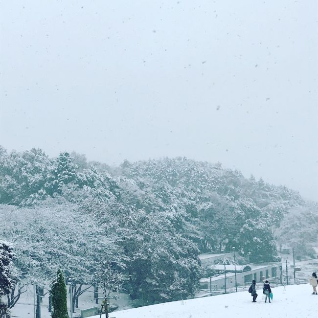 For The First Time In 54 Years It Snowed In Tokyo
